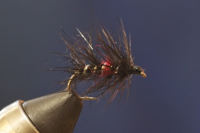 Fly of the Month (July 2015) How to tie a Bibio