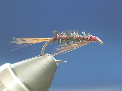 Tying and Fishing the Diawl Bach: Fly of the Month (August 2015)
