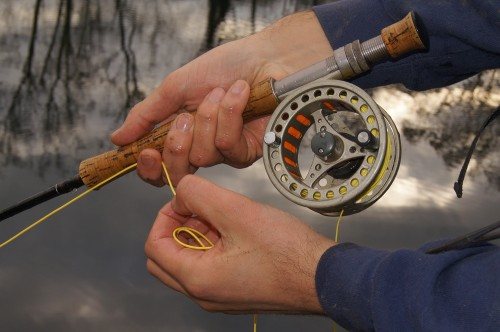 Retrieve speed and keeping the fly at the right depth are crucial for perch.