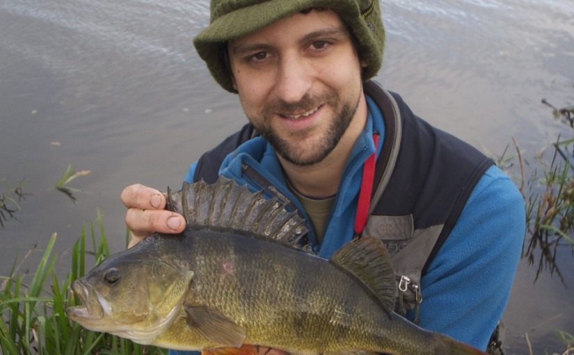 big perch on the fly