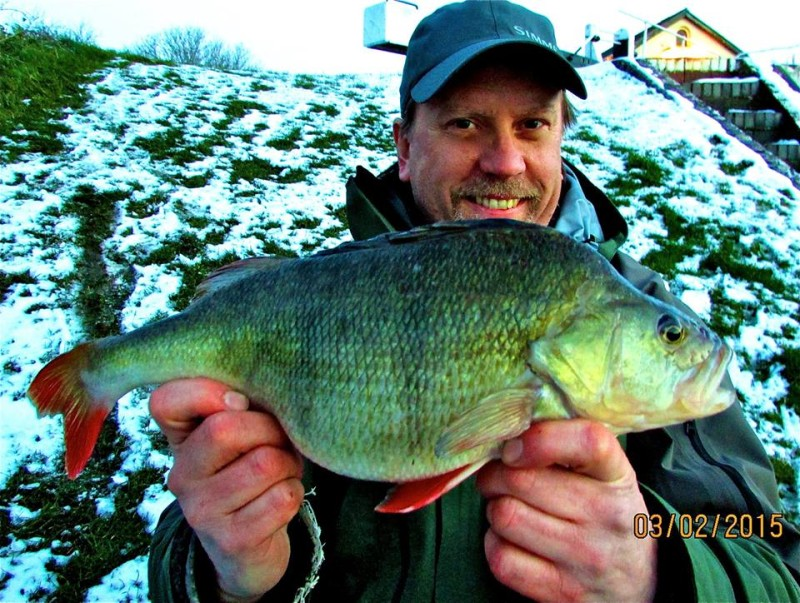DWB_Perch