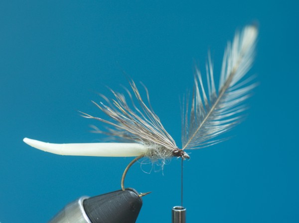 Mayfly hackle