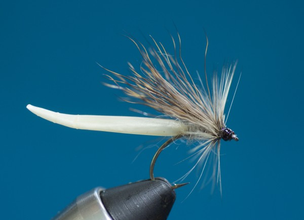 Detached body Mayfly step by step