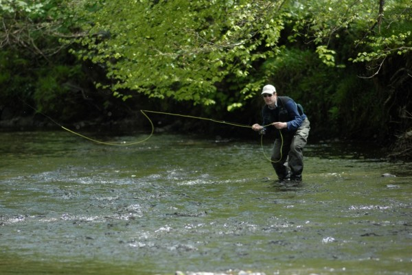 Devon Mayfly season fly fishing