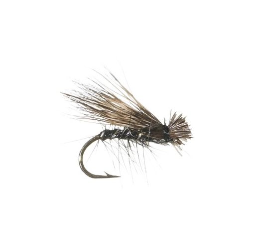 Black_ELK_HAIR_CADDIS