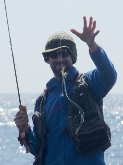 fly fishing for garfish