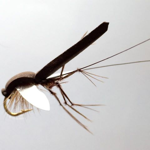 Reversed Daddy Longlegs fly pattern