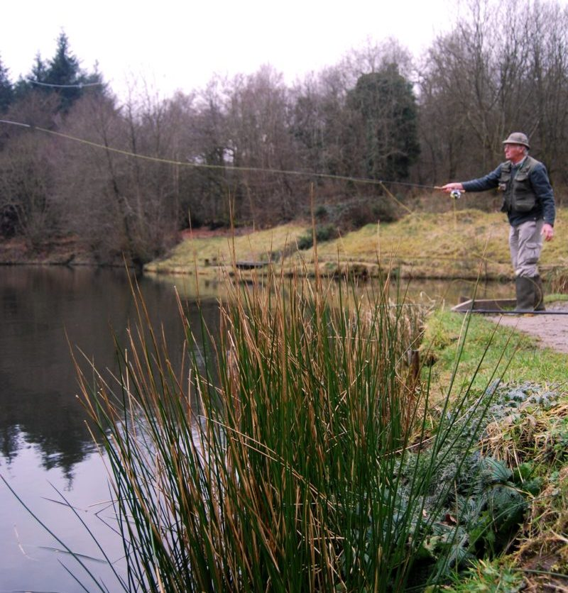 Hollies fly fishing in East Devon