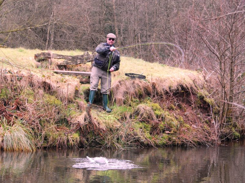 Action Fly fishing Devon Hollies