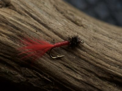 Small bloodworm fly Turrall