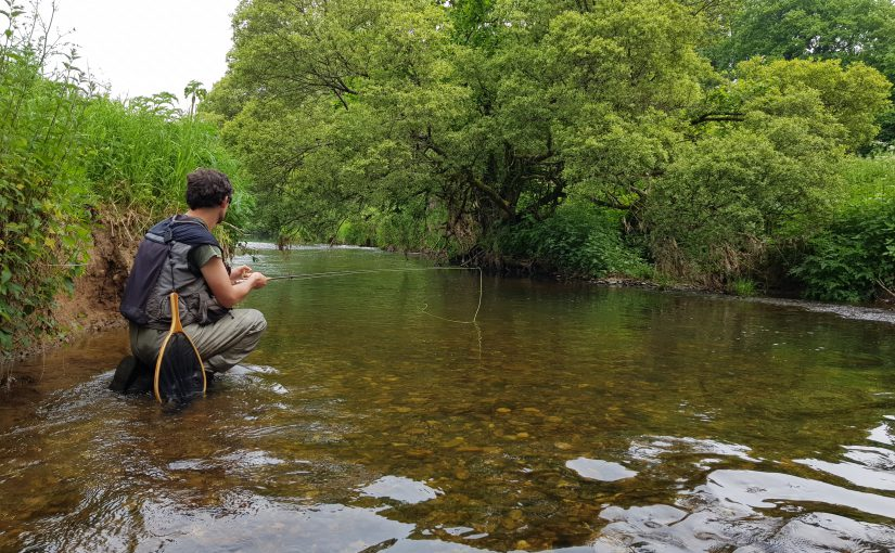 Two's Company: Fly fishing on Devon's River Otter