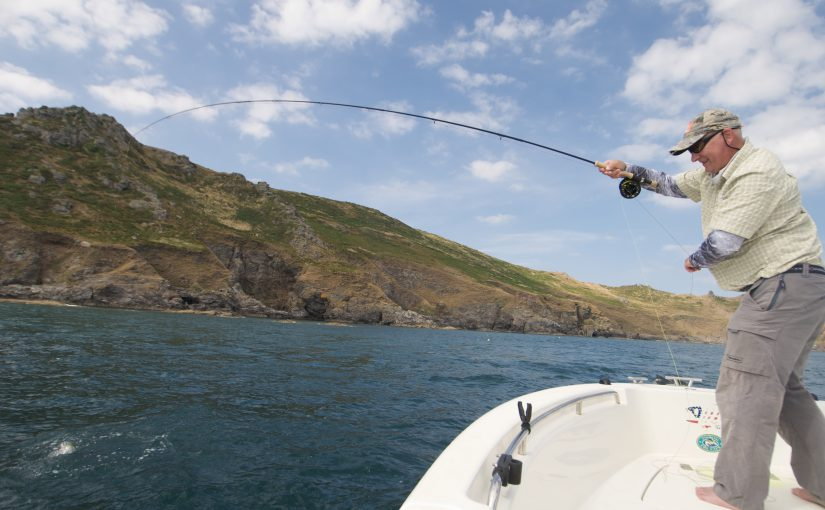 Bass fly fishing South West Devon Cornwall