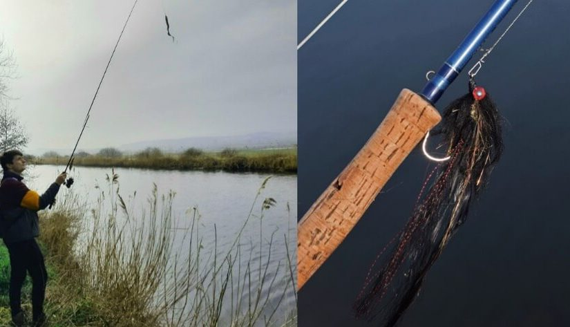 Live session: Fly vs lure for pike!
